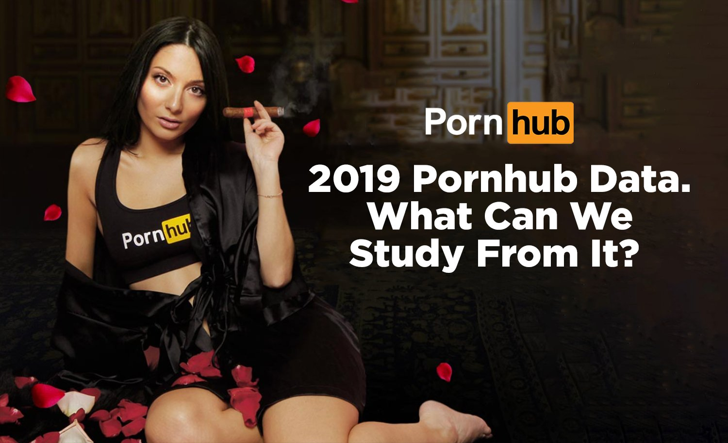 2019 Pornhub data. What Can we study from It?